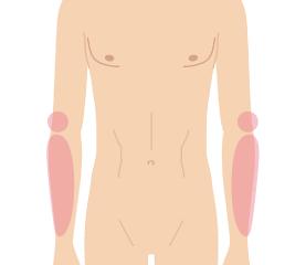 肘下(肘含む・手の指甲含まず)